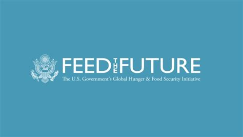 Branding Feed The Future Usaid Branding And Marking Template