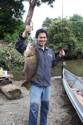 borneo fresh water wild fishing black ghost