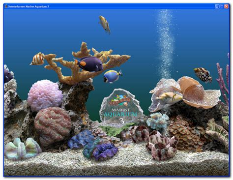 serenescreen marine aquarium download marine aquarium 3 2 windows installation instructions