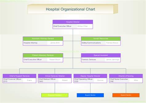 hospital organizational chart hospital free org chart