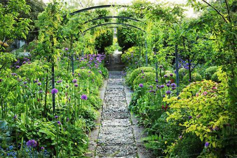 view   garden path flower beds  purple allium