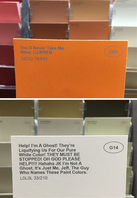 weird paint color names obvious plant adds clever fake names to ordinary paint