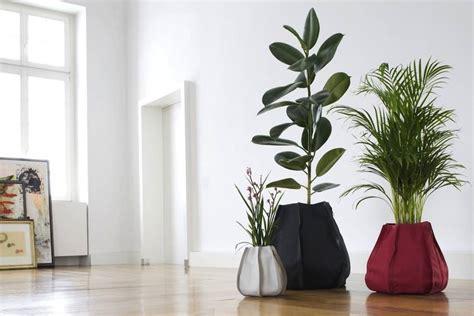 vasi di design per interni vasi design per piante da interno garden arredare