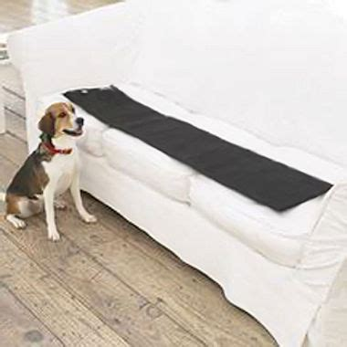 dog couch deterrent sofa scram sonic dog cat deterrent slash pets