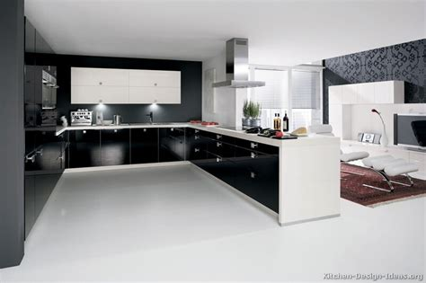Contemporary Kitchen Cabinets Contemporary Cabinets White And Black Kitchen Cabinets