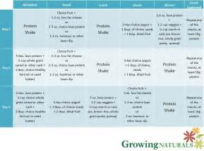 Sample 3 day eating plan with gn protein shakes growing naturals
