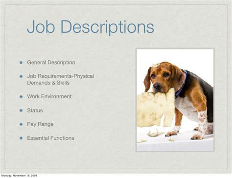 What Is A Vet Assistant Description by Building And Retaining Your Veterinary Team
