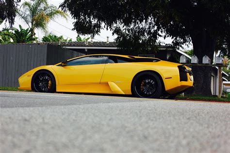 Mercy Lamborghini by Lamborghini Mercy Madwhips