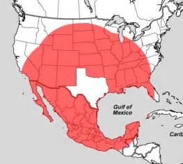 Where Is Tx What S Closer To Than Is To Itself The Atlantic