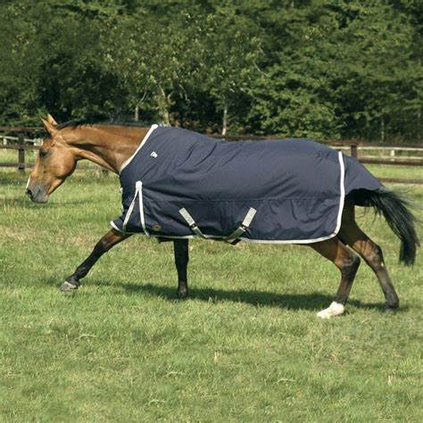 todd autumner turnout rug neck cover