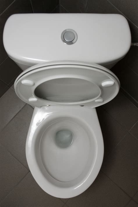 fear of using the bathroom how i handle the toilet seat being left up and other