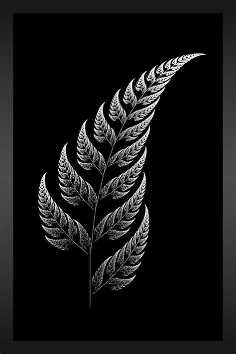 silver fern tattoo designs the silver fern by aeires tattoos fern
