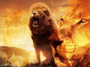 imagenes de guerreros en leones el rugido del le 243 n