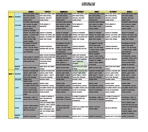 shred diet plan 30 day shred diet menu best diet solutions program