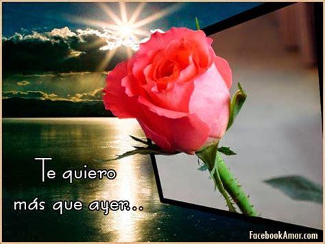imagenes de rosas rojas imagenes de rosa rojas con frase de amor imagenes