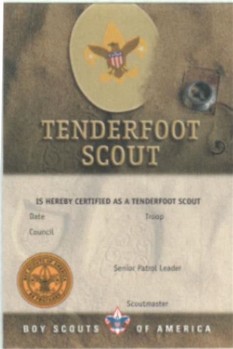 Cub Scout Advancement Card Templates by Boy Scout Ranks Car Interior Design