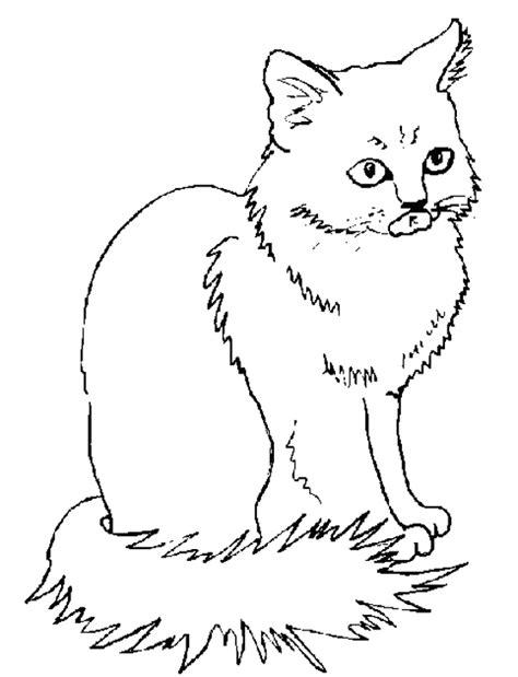coloriage de chaton a imprimer az coloriage coloriages chat les animaux page 2