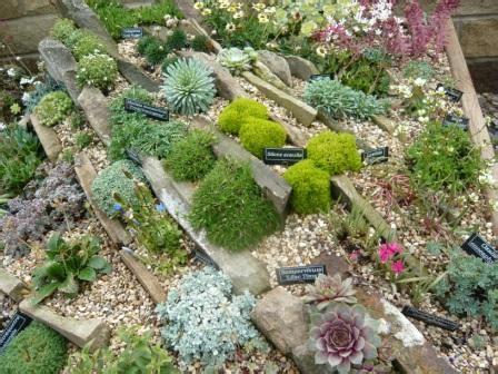 alpine growers club ags gardeners tips