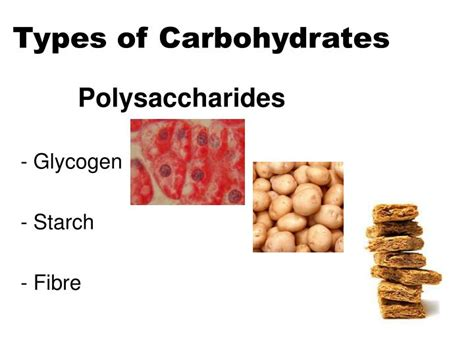 9 types of carbohydrates ppt sports nutrition powerpoint presentation id 6415320