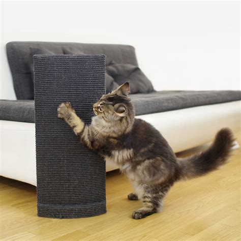 sofa protector from cats new 28 protect sofa from cat 10 ideas how to protect