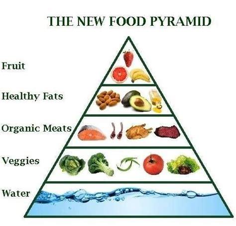 healthy fats on whole30 paleo food pyramid paleo whole30 food