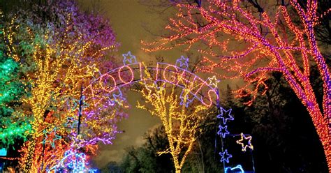 zoo lights dc 2017 washington dc zoo lights 2017 decoratingspecial com