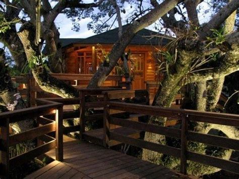 awesome tree house plans awesome tree house plans awesome 10 best treehouse plans and designs coolest tree
