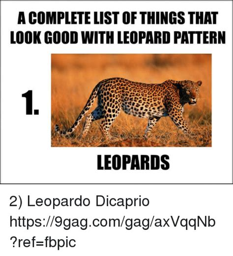 8 Things To Look For In A Great by A Complete List Of Thingsthat Look With Leopard
