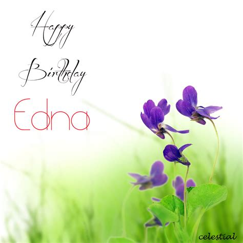 download evi edna happy birthday mp3 everywhere you go always take the weather with you download