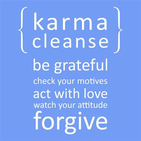 Detox Karma by Karma Cleanse 01 Vinyl Wall Quote Decal 60 Colors To Choose