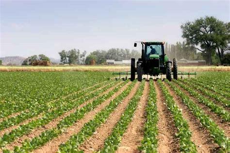 comune di lecce ufficio tributi ici utilizzo agricolo dei terreni