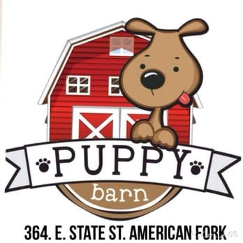 puppy barn provo puppy barn 38 photos 33 reviews pet stores 364 e state st american fork ut