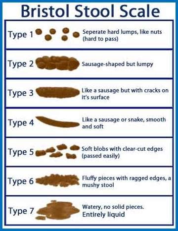 Bristol Stool Scale Explained by Bowel Cleansing Symptoms Causes And Treatment