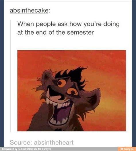 End Of Semester Memes - best 25 the lion king ideas on pinterest lion king