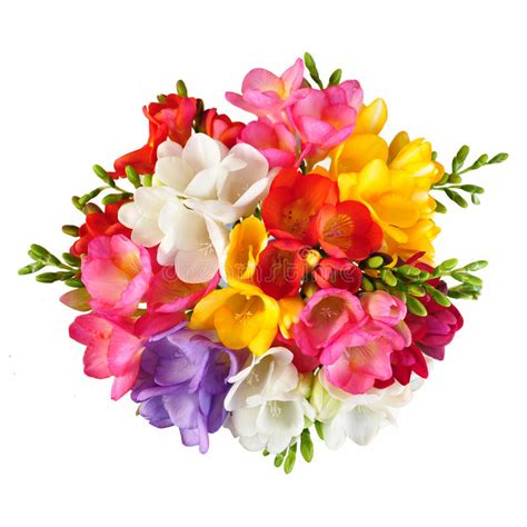 colorful spring flowers bouquet bouquet top view stock image image of flowers view