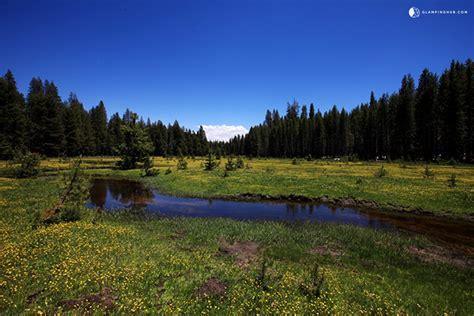 cabin yosemite national park log cabin next to yosemite national park california