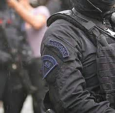 Pin Gegana Indonesia S Mobile Brigade Brimob Komando Samber