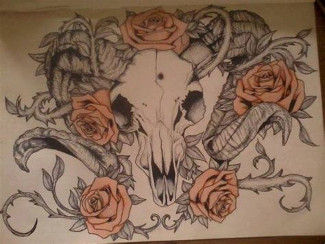 ram head tattoo designs ram skull drawing