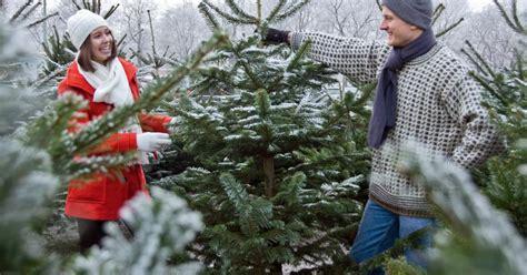 garten 2000 weihnachtsbaum so finden sie den perfekten weihnachtsbaum mein sch 246 ner