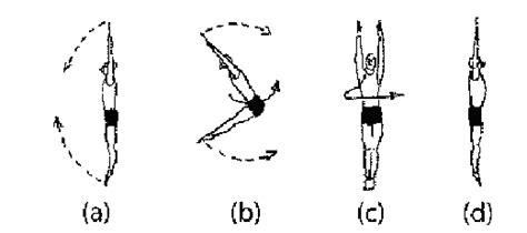gymnastics layout half twist jack kelly s let s twist again
