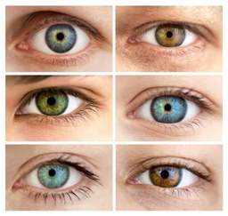 eye color hazel hazel learn why with greenish eye color are