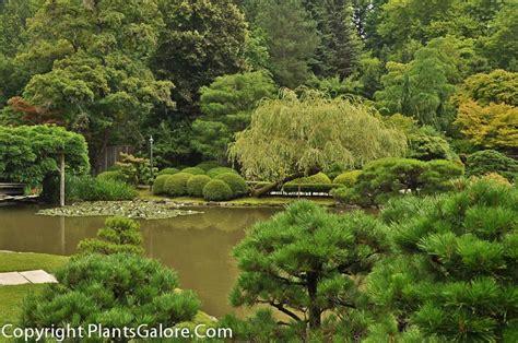 Uw Botanic Gardens Of Washington Japanese Garden Usa Gardens Parks Squares And Open Spaces