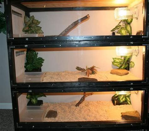 Aquascaping Materials 13 Best Images About Reptile Enclosures On Pinterest