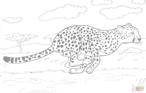Ausmalbild: Rennender Gepard   Ausmalbilder kostenlos zum