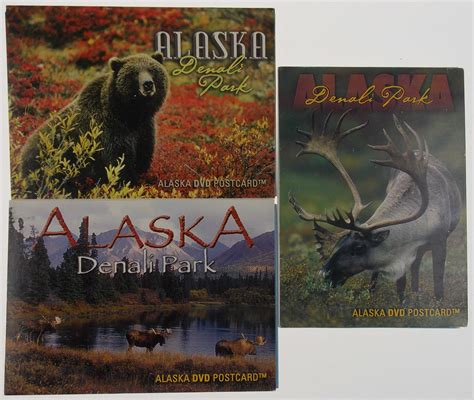the grizzlies of mount mckinley classic reprint books alaska dvd postcard lot 3 alaska s denali national park