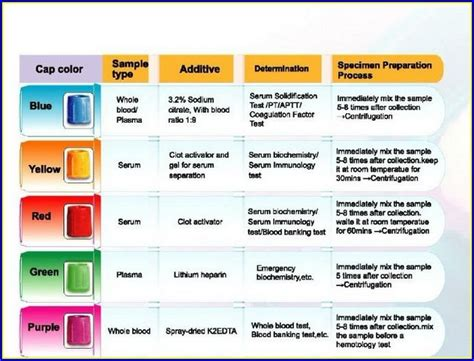 phlebotomy colors blood draw colors findingloveblog phlebotomy