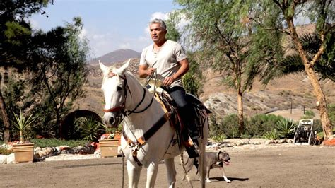how to get cesar millan to your cesar photos cesar millan the real story national geographic channel