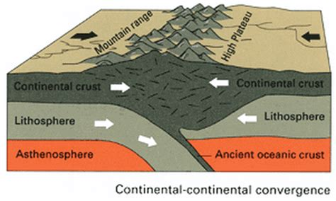 convergent boundary diagram list of synonyms and antonyms of the word convergent