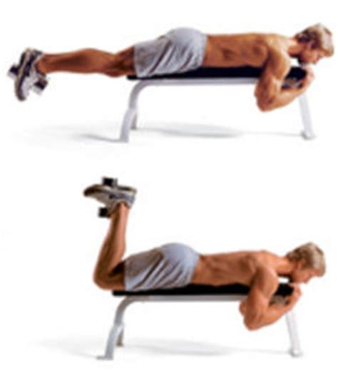 knee on bench dumbbell leg workout ogblueberry