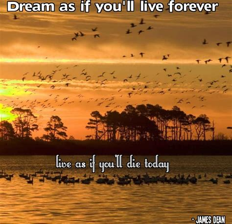 Encouraging Quotes Motivated And Uplifting Encouraging Quotes